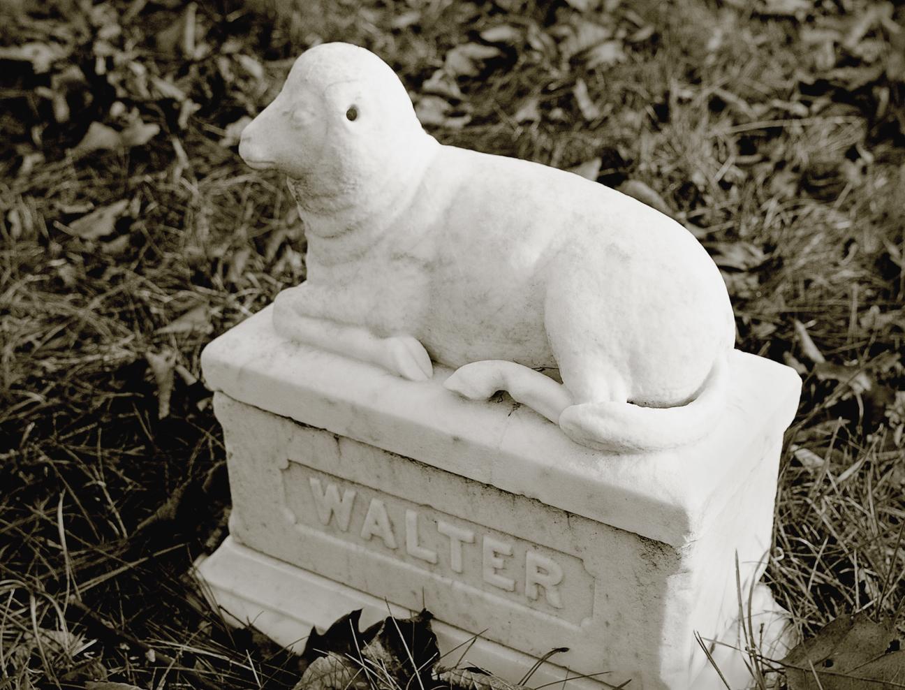 Vine Lake Cemetery - little walter