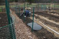 cg-3-Community garden 4-12-20 4
