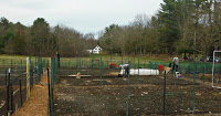 cg-6-Community garden 4-12-20 1